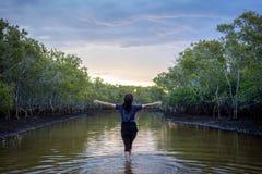 Känn sig fri under en solnedgång Royaltyfria Bilder