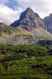 Känneteckenmaximum i berg Arkivfoto