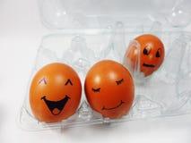 Känsligt ägg Arkivfoton