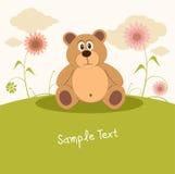 kär natur för björn Arkivfoton