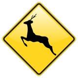 kär varning för crossing Royaltyfri Fotografi