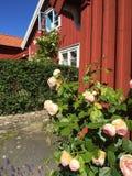 Käringön. Fishing huts at Käringön on Sweden's western Royalty Free Stock Photos