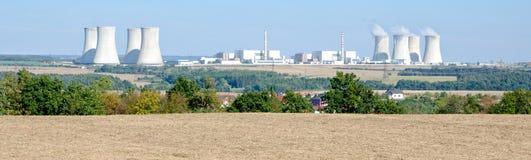 kärn- växtström Royaltyfri Fotografi