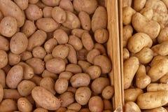 Kärna ur potatisar Arkivfoton