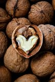 kärnan cracked hjärta formade valnöten Royaltyfri Foto