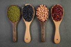 Kärnar ur beansBlackbönan, den röda bönan, jordnöten och den Mung bönan som är användbar för hälsa i träskedar på grå bakgrund Royaltyfria Foton
