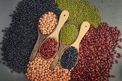 Kärnar ur beansBlackbönan, den röda bönan, jordnöten och den Mung bönan som är användbar för hälsa i träskedar på grå bakgrund Royaltyfri Foto
