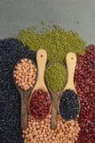 Kärnar ur beansBlackbönan, den röda bönan, jordnöten och den Mung bönan som är användbar för hälsa i träskedar på grå bakgrund Royaltyfri Bild