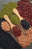 Kärnar ur beansBlackbönan, den röda bönan, jordnöten och den Mung bönan som är användbar för hälsa i träskedar på grå bakgrund Arkivfoto