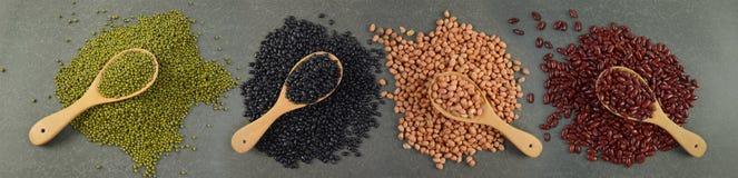 Kärnar ur beansBlackbönan, den röda bönan, jordnöten och den Mung bönan som är användbar för hälsa i träskedar på grå bakgrund Arkivbilder