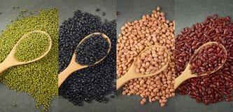 Kärnar ur beansBlackbönan, den röda bönan, jordnöten och den Mung bönan som är användbar för hälsa i träskedar på grå bakgrund Arkivbild