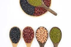 Kärnar ur beansBlackbönan, den röda bönan, jordnöten och den Mung bönan som är användbar för hälsa i träskedar på vit bakgrund Arkivfoton