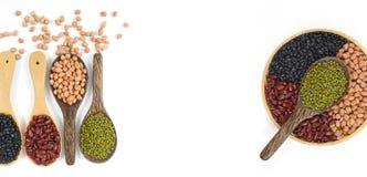 Kärnar ur beansBlackbönan, den röda bönan, jordnöten och den Mung bönan som är användbar för hälsa i träskedar på vit bakgrund Fotografering för Bildbyråer
