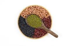 Kärnar ur beansBlackbönan, den röda bönan, jordnöten och den Mung bönan som är användbar för hälsa i träskedar på vit bakgrund Arkivbilder