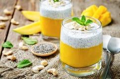 Kärnar ur den grekiska yoghurten Chia för mango pudding med kasjuer Fotografering för Bildbyråer