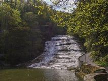 Kärnmjölk faller delstatsparkvattenfallet, Ithaca, NY, USA Royaltyfri Fotografi