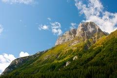 Kärntnerischer Berg lizenzfreies stockbild