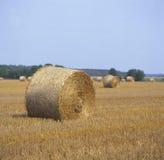 Kärve av hö på farmland.JH Royaltyfria Foton