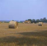 Kärve av hö på farmland.JH Royaltyfri Bild