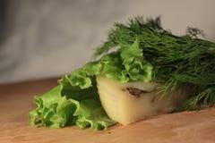 Käse auf einem Blatt des Salats Lizenzfreies Stockbild
