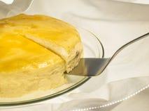 Käse backte Kuchen mit Aprikosenstau und -rosinen Stockbilder