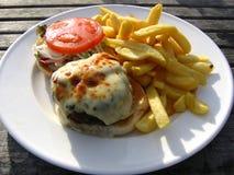Käse-Burger-und Chip-Al-Fresko Lizenzfreie Stockbilder