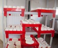 Käse in den Formteilen wartet, um bereit zu sein Lizenzfreie Stockfotos