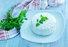 Käse mit frischer Petersilie stockfotografie
