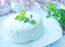 Käse mit frischer Petersilie stockfotos