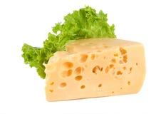 Käse mit Kopfsalat Stockfotografie