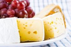 Käse mit Trauben Stockbild