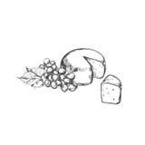 Käse mit Trauben Gezeichnetes Konzept des Vektors Hand lizenzfreie abbildung