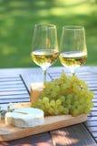 Käse, Trauben und weißer Wein Lizenzfreies Stockfoto