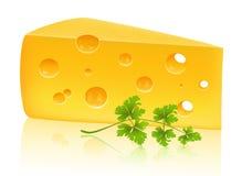Käse und Petersilie Stockfotos