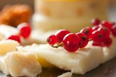 Käse und rote Johannisbeere Lizenzfreies Stockfoto