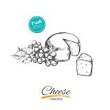 Käse Vektorhand gezeichnet lizenzfreie abbildung
