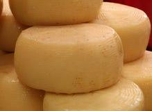 Käseformen riefen Caciotta auf italienisch an lizenzfreie stockfotografie