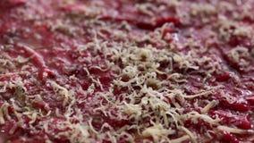Käsegitter - Parmesankäseparmesankäse an Rindfleisch carpaccio stock video