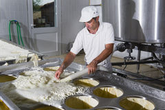 Käsehersteller gießt den gerade geronnenen Käse stockfoto