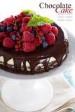 Käsekuchen mit Beeren auf einer Schokoladenkuchenschicht Lizenzfreie Stockfotos