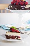 Käsekuchen mit Beeren auf einer Schokoladenkuchenschicht Stockfotos