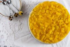 Käsekuchen mit Jogurt und Pfirsichen Lizenzfreie Stockbilder