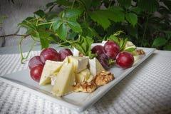 Käseplatte mit Trauben und Muttern Stockfotos