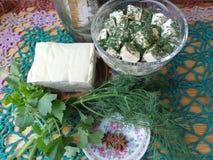 Käsetofu-Dillrezept mit dem Korianderkochen Stockfotos