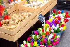 Kästen Birnen und hölzerne Tulpen in Bloemenmarkt u. in x28; Amsterdam& x29; Stockfotografie