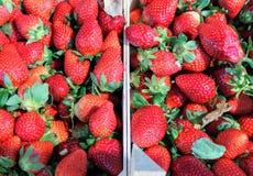 Kästen mit geschmackvollen roten Erdbeeren stockfotografie