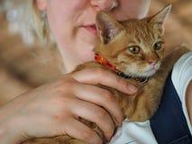 Kätzchen auf Arm des Mädchens stockbild