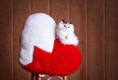 Kätzchen auf Herzen Stockfotos