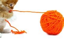 Kätzchen, das mit Kugel der Wollen spielt Lizenzfreies Stockfoto