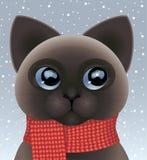 Kätzchen, das roten Schal trägt Stockfoto